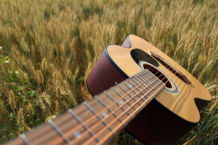 Close up of an acoustic guitar in a wheat field Standard-Bild - 112617123