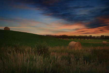 Round bales of hay in a farmers field under a beautiful sunset Standard-Bild - 117299982