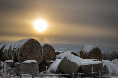 Snow covered stack round bales of hay in a farmers field