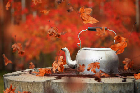 Autumn scene of red leaves blowing around a kettle on the grill of a fire pit Stok Fotoğraf
