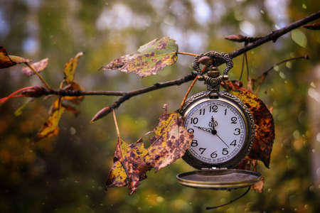 Autumn scene of an antique pocket watch hanging from a tree branch Stok Fotoğraf