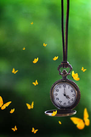 Butterflies flying around a brass pocket watch hanging from a leather rope Standard-Bild - 117300176