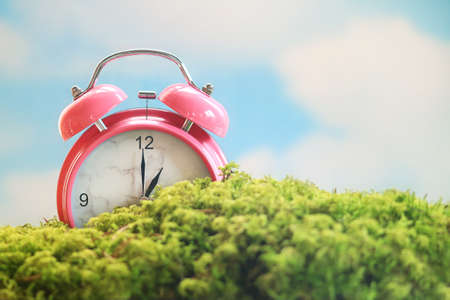 Spring scene of a pink alarm clock sitting in the moss under a blue sky Stok Fotoğraf