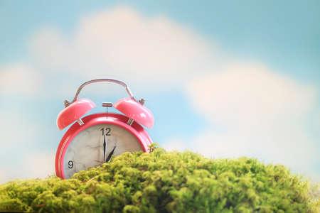 Spring scene of a pink alarm clock sitting in the moss under a blue sky Standard-Bild - 123350918