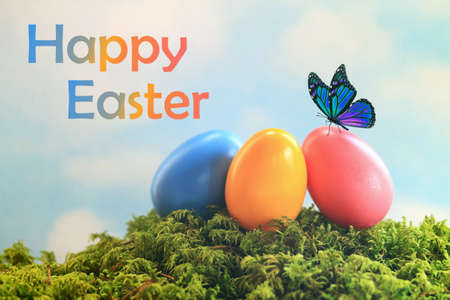 Blue butterfly sitting on a nest of colorful easter eggs with the words happy easter Stok Fotoğraf