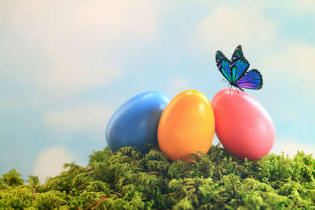 Blue butterfly sitting on a nest of colorful easter eggs