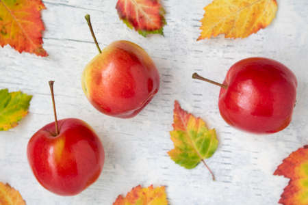 Crab apples and autumn leaves on a white washed wood background
