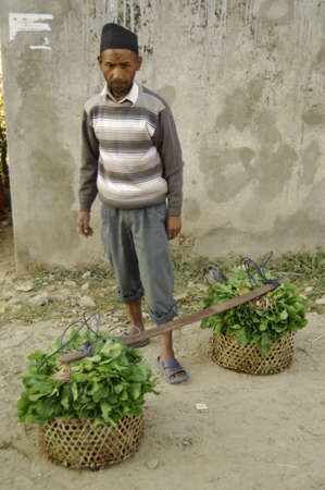 underpaid: a man with some vegatables to sell from his garden in Kathmandu nepal Editorial