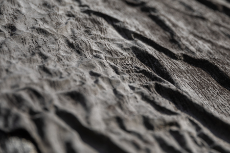 Texture of a material rubberoid