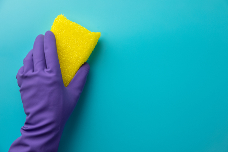 hands cleaning with purple glove and yellow sponge Stock Photo