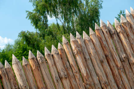 A wooden fence in the form of sharp planed and hewn logs, against a background of green crowns of trees