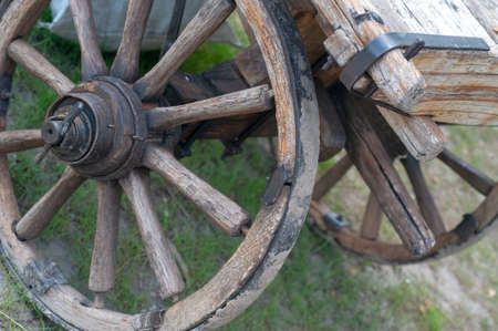 Old wooden wagon wheel sitting Reklamní fotografie