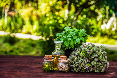 Aromatic herbs and essential oils. Thyme and mint pot. Vinegar and oil. Copy space.