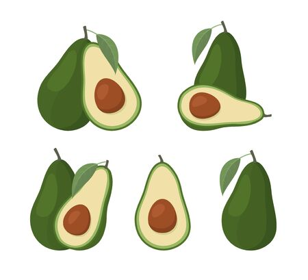 Set of avocados isolated on white background. Vector Illustration Stock Illustratie