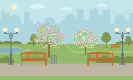 City park with bench, lawn and blooming trees. Spring landscape background. Vector illustration. Çizim