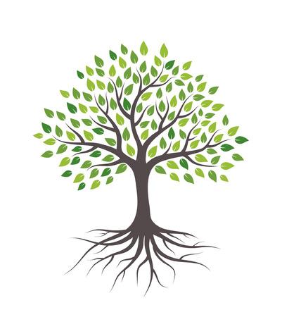 Árbol con hojas y raíces verdes. Aislado sobre fondo blanco. Ilustración de vector