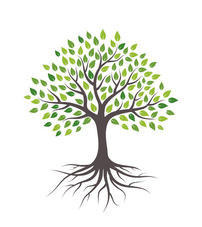 Tree with green leaves and roots. Isolated on white background. Illustration