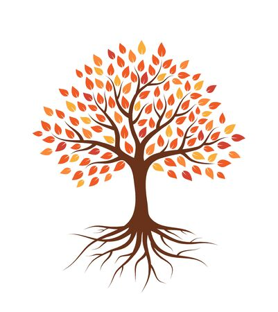 Árbol con raíces y hojas de otoño. Aislado sobre fondo blanco. Estilo plano, ilustración vectorial. Ilustración de vector