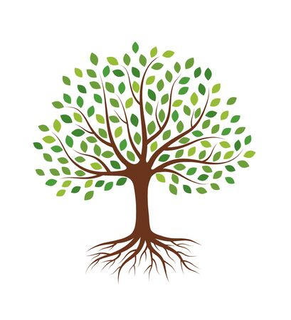 Tree with green leaves and roots. Isolated on white background. Flat style, vector illustration.