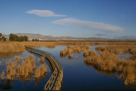 hondo: Parque Natural El Hondo