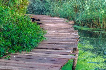 Wood footpath in Dal Lake, Srinagar, India. Stock Photo