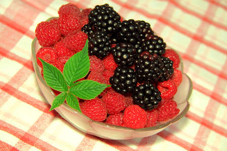 appetize: Raspberry and blackberry Stock Photo