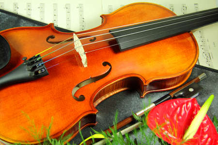 Violin with flower on a music sheet Stock Photo
