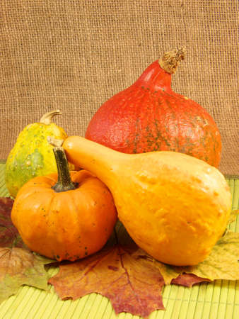 Pumpkins and autumn leaves photo