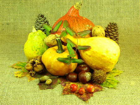 Autumn decoration photo