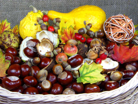 Autumn basket photo
