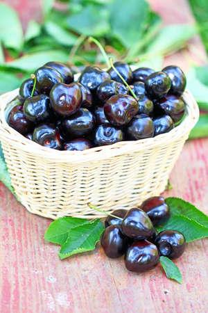 Fresh black cherries Stock Photo