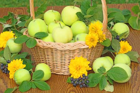 Apple Basket on the garden table