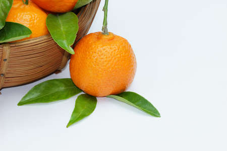Mandarins on white bacground Stock Photo