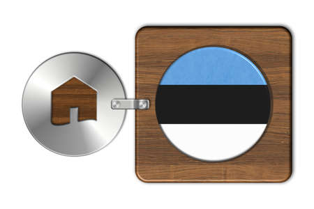 icona: Symbol house in steel and wood with flag Estonia