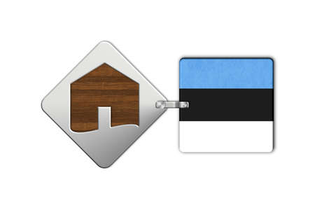 lucido: Symbol home 2 steel and wood with flag Estonia