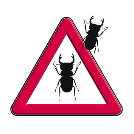 Warning or Caution Red cockroaches Stock Photo