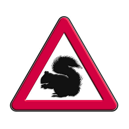 Warning or caution in red squirrel Stock Photo