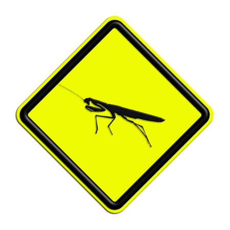 icona: Warning or caution yellow and black grasshopper