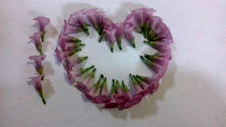 wild flower: Love Simbol of Purple Wild Flower