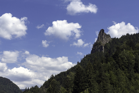 herbe ciel: Landscape on the top of the mountains, evergreens, sky, grass