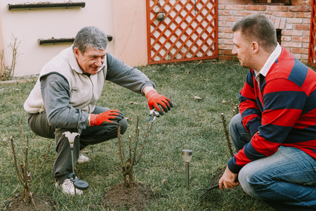 Young neighbour helps senior men with gardnering work around the house Stock Photo