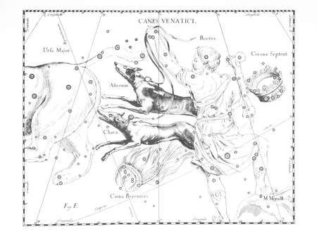 celestial: astronomical constellation of hounds on a light background