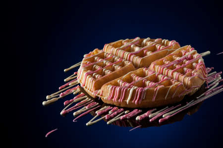 specular: round cookies on a dark background with reflection Stock Photo