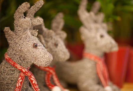 Christmas reindeer with a red knitted scarf closeup
