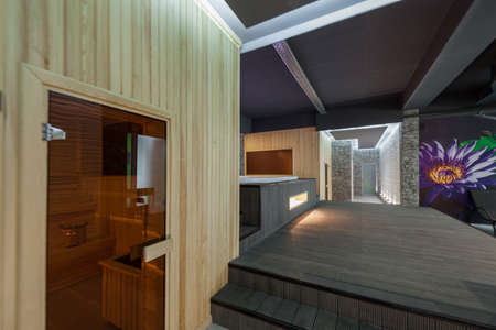 lath in modern: modern interior room spa complex and the sauna