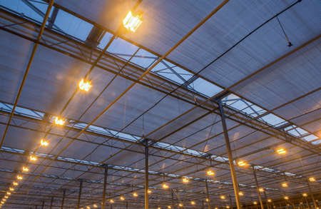 the roof of the greenhouse with a burning lighting equipment, evening hours