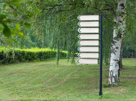 blank sign in the park on a background of trees Reklamní fotografie