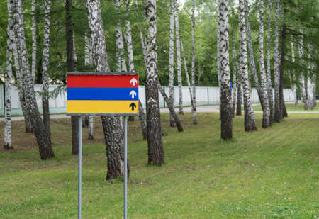 colored blank sign in the park on a background of trees Reklamní fotografie