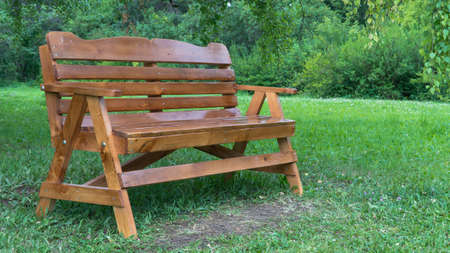 wooden bench in the Park on the grass