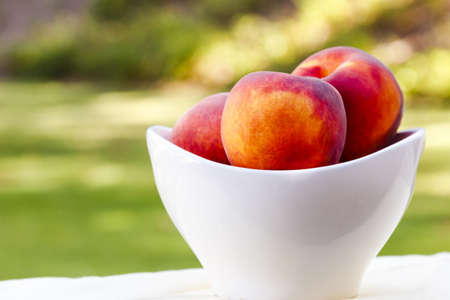 Delicious peaches in ceramic bowl on garden table in park photo